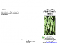 AMPALAYA PRODUCTION GUIDE