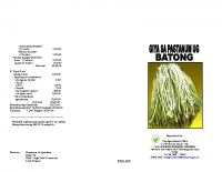 STRING BEANS (BATONG) PRODUCTION